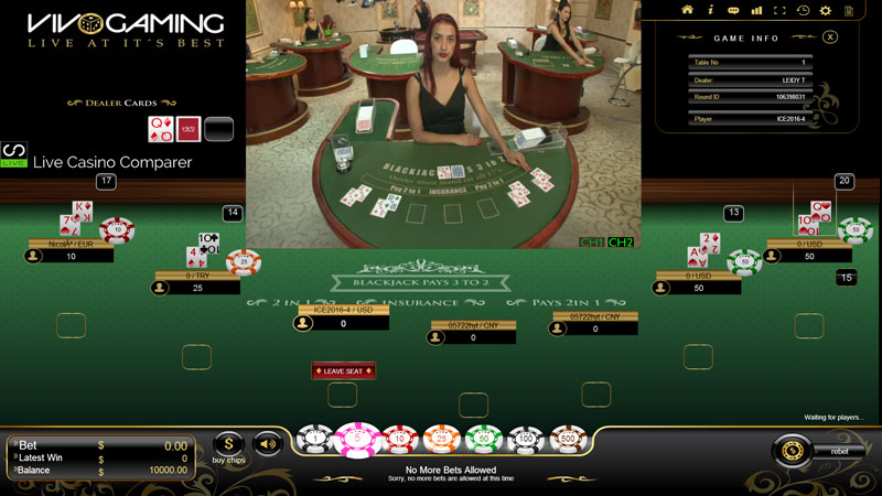 live dealer blackjack vivo